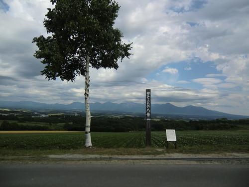 Cimg7113